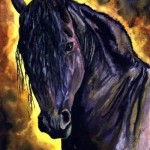 Black Stallion_sm